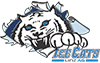 DHC IceCats Linz AG Logo